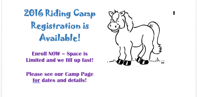 Camp for Web Site